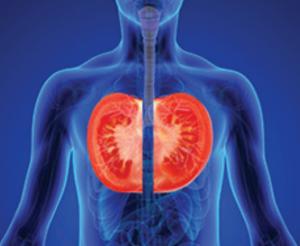 Tomate Salud pulmonar