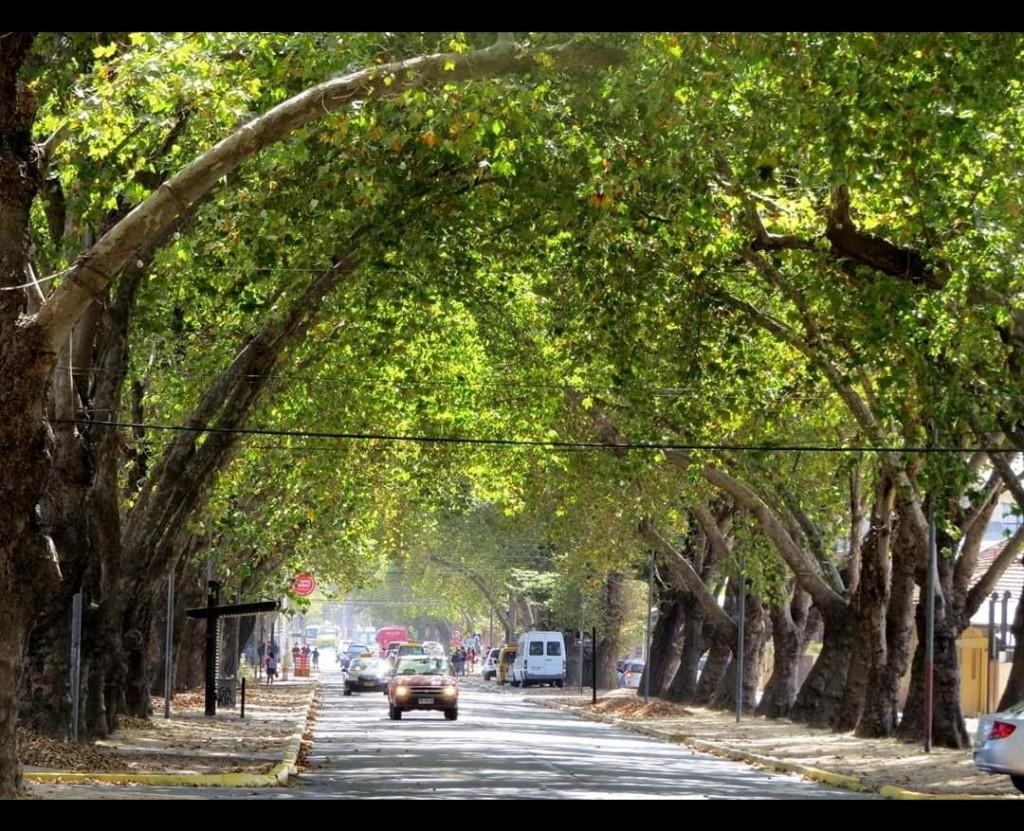 Avenida Urmeneta Limache